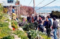 Food Guardians' Walking Tour of Bayview-Hunters Point by Samatha Roxas